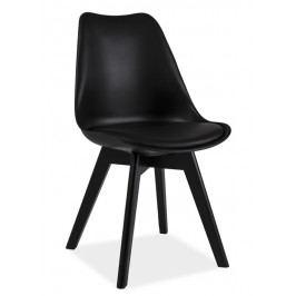 Jídelní židle KRIS II, černá/černá