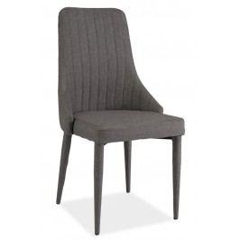 Smartshop Jídelní čalouněná židle AURA, šedá