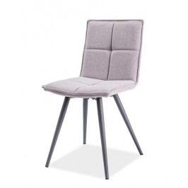 Smartshop Jídelní čalouněná židle DARIO, šedá