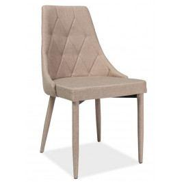 Jídelní čalouněná židle TRIX, béžová
