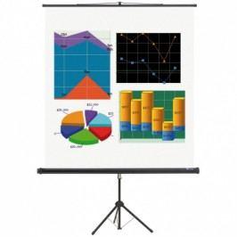 Projekční plátno na stojanu BASIC, 1500 x 1500 mm