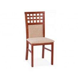 STRAKOŠ D-MARK Jídelní židle STRAKOŠ DM28
