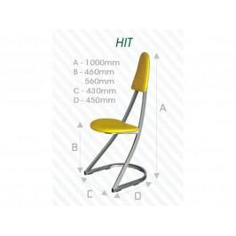 Kovová židle STRAKOŠ Hit56
