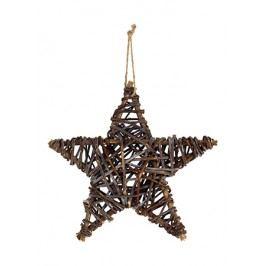 Hvězda proutěná