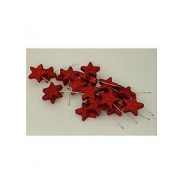 Vánoční hvězdička červená. Cena za 1 polybag