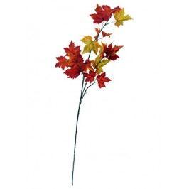 Podzimní větev