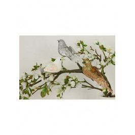 Ptáček s klipem, sada 3 ks, mix barev bílá, zlatá, stříbrná