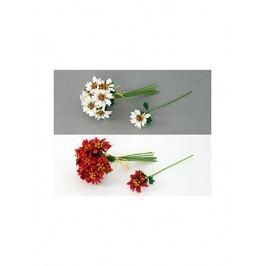 Puget malých poinsécií, na výběr bílé nebo červené