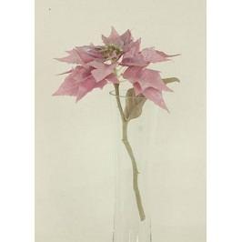 Vánoční růže, poinsécie umělá květina, staro-růžová glitrovaná