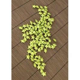 Hvězička zelená dekorační, cena za sadu 120 kusů/1 polybag.