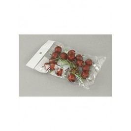 Autronic Sada jablíček s drátkem - červená. Cena za 1 polybag