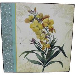 obraz 25x25 - květy5, 355054