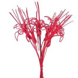 kytka pedig,10ks-40cm červená