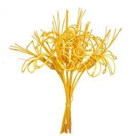 kytka pedig,10ks-40cm žlutá