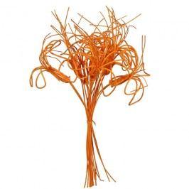 kytka pedig,10ks-40cm oranžová