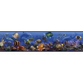 Samolepící  bordury Moře - Mořský svět