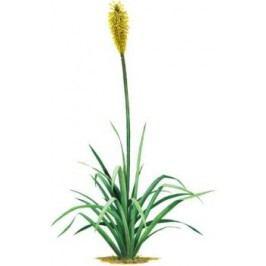 Samolepící dekorace  Žlutý květ