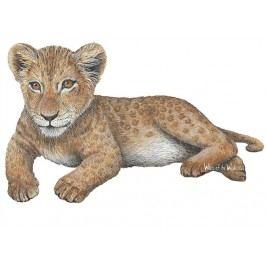 Samolepící dekorace  Lev mládě