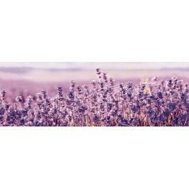Dekor Ceracasa Velvet fialová Lavanda 25x73 cm, lesk DLAVANDA