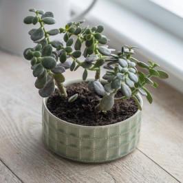 Garden Trading Keramický obal na květiny Sorrento, zelená barva, keramika