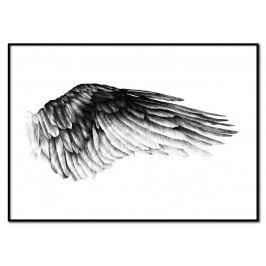 Plakát The Wing of Ikaros 30 x 40 cm, černá barva, bílá barva, papír