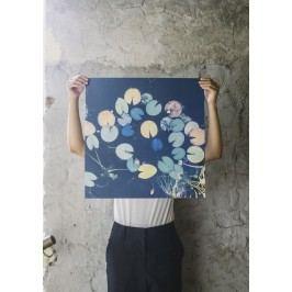 Plakát Water lilies 50x50 cm, modrá barva, papír