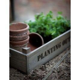 Garden Trading Dřevěný box na květiny Planting out, šedá barva, dřevo