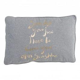 Polštář Your Own Sunshine 60x40, šedá barva, zlatá barva, textil
