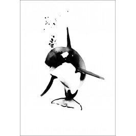 Plakát Mini Killer Whale A4, černá barva, papír
