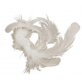 Dekorativní peříčka White 5 gr, bílá barva