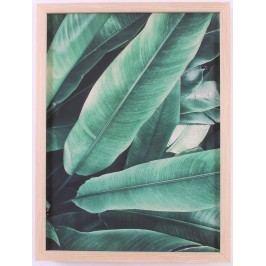 La finesse Obraz v rámu 40x30 cm, zelená barva, hnědá barva, dřevo