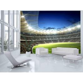 Murando DeLuxe Fototapeta- stadion 150x116 cm