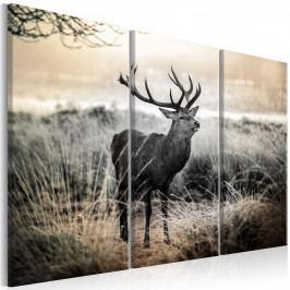 Murando DeLuxe Vícedílný obraz - jelen v krajině 90x60 cm