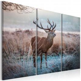 Murando DeLuxe Vícedílný obraz - pyšný jelen 90x60 cm
