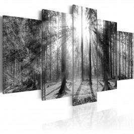 Murando DeLuxe Pětidílné obrazy - les vzpomínek 200x100 cm