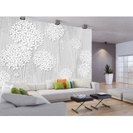 Murando DeLuxe Tapeta Bílé květy na dřevě 150x105 cm