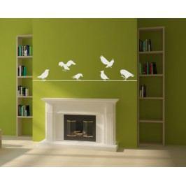 Ptáci na drátě (60 x 15 cm) -  Samolepka na zeď