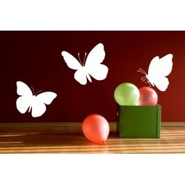 Motýlí set 3 - Samolepka na zeď