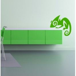 Chameleon (20 x 20 cm) -  Samolepka na zeď