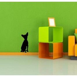 Silueta psa 2 (50 x 20 cm) -  Samolepka na zeď