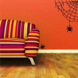 Pavučina s pavoukem (50 x 31 cm) -  Samolepka