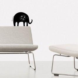 Africký sloník (36 x 25 cm) -  Samolepka na stěnu