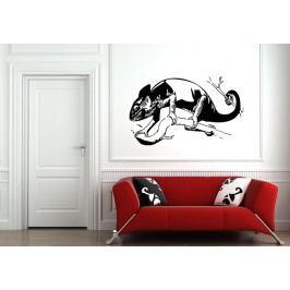 Chameleon na větvi (40 x 25 cm) -  Samolepka na zeď