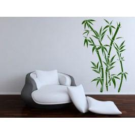 Čínský bambus (60 x 32 cm) -  Samolepka na zeď