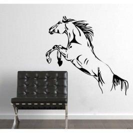 Skákající kůň (60 x 33 cm) -  Samolepka na zeď