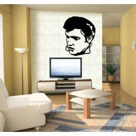 Elvis Presley (50 x 40 cm) -  Samolepka na zeď