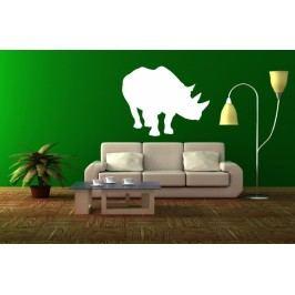 Nosorožec (50 x 40 cm) -  Samolepka na zeď