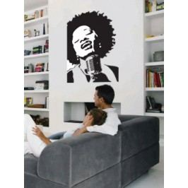 Zpěvačka (60 x 40 cm) -  Dekorace na stěnu