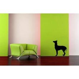 Silueta psa 3 (50 x 43 cm) -  Samolepka na stěnu