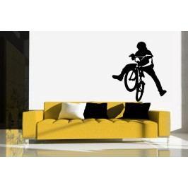 Bmx kolo freestyle (50 x 45 cm) -  Dekorace na stěnu